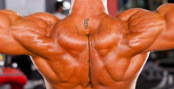 Как нарастить мышцы?